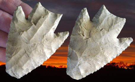 Cast of a Lowe point from Lowe Ranch, northern Belize.