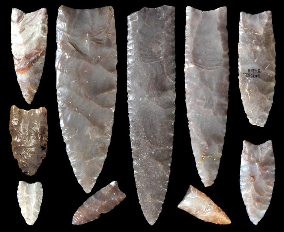 Nine clovis points found on the blackwater draw site