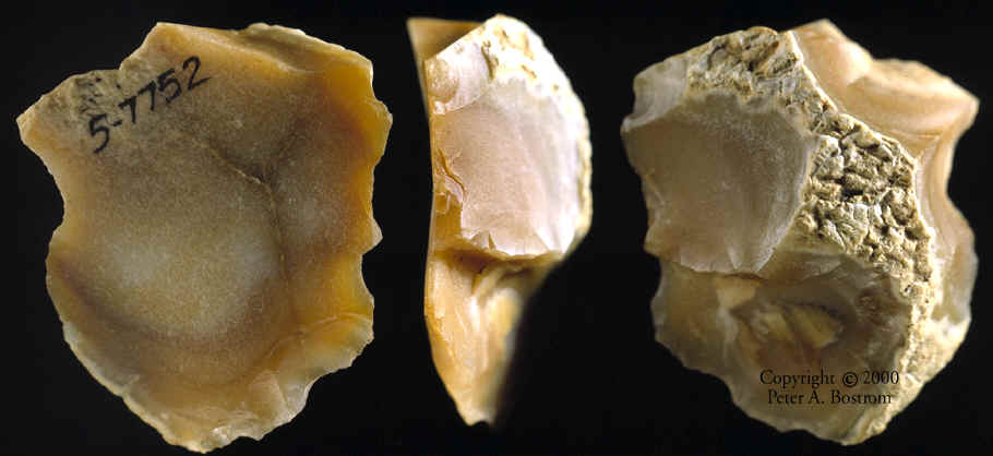 The Oldowan Stone Tool Industry