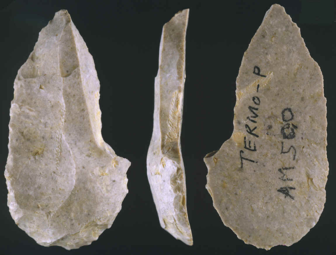 paleolithoic era essay Paleolithic and neolithic research papers paleolithic and neolithic people from the 'stone age',which was considered a remarkable change in human history, were considered to be little more than upright animals this is a topic suggestion on paleolithic and neolithic from paper masters use this topic or order a custom research paper, written exactly.