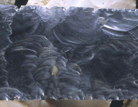 Closeup of the area of repair on this obsidian biface.