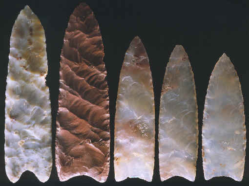 Five Clovis points from the Fenn cache.