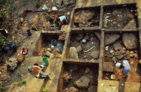 Excavation of Kimmswick site bone bed in 1979.