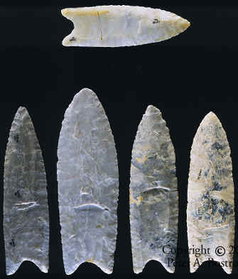 Five Lamb site Clovis points.