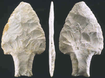 Stemmed Fluted Paleo point from Belize.